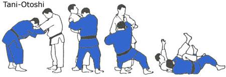 Image result for tani otoshi